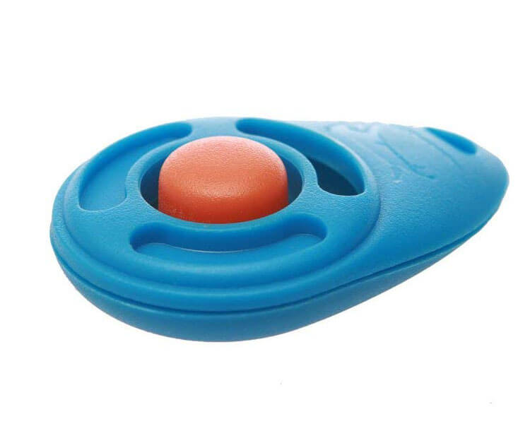 a clicker used for dogs training