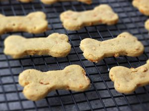 5 Healthy Dog Biscuit Recipes