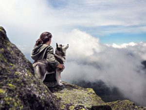 The Ultimate Guide When Hiking and Camping with Dogs