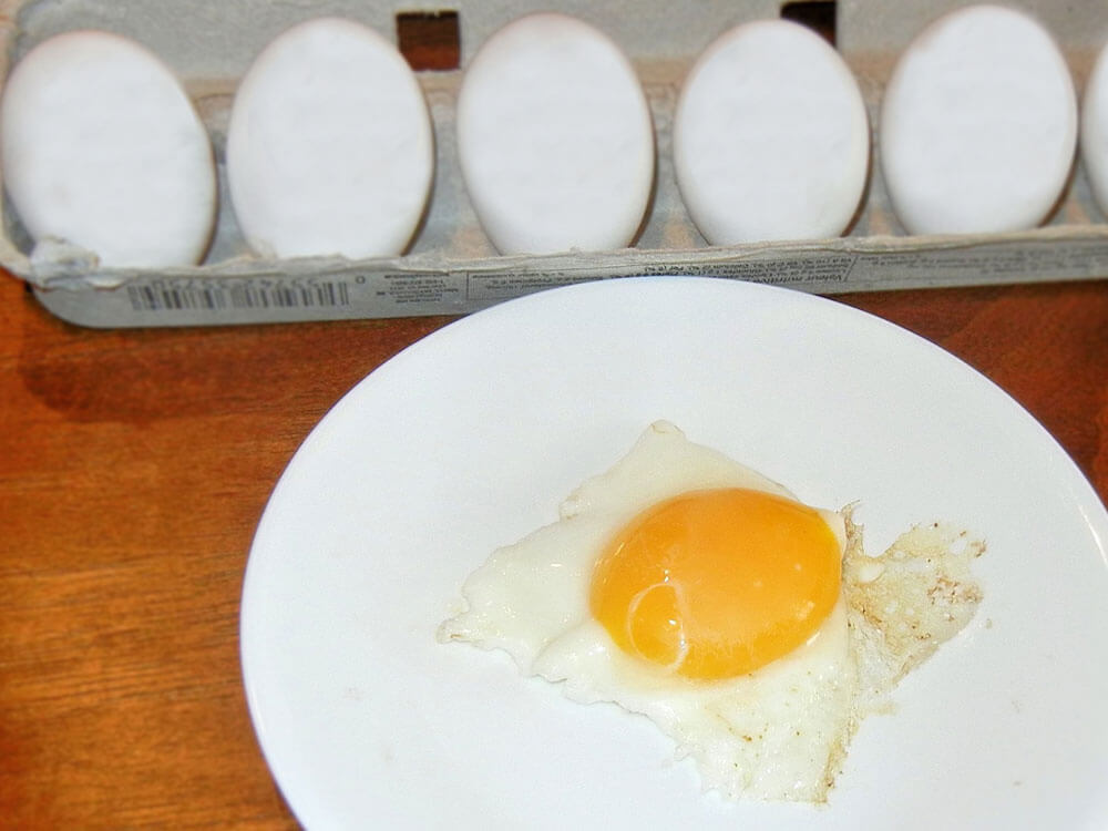 raw eggs for dogs