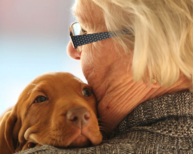 an ill old woman hugging its dog