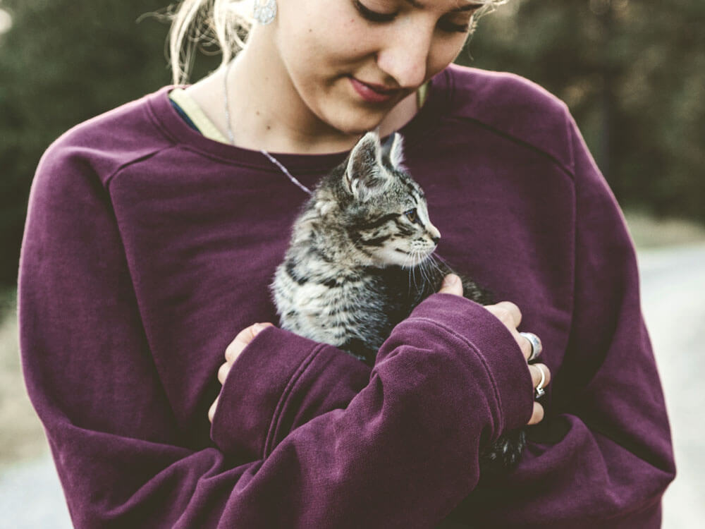 a cat hugged by a woman