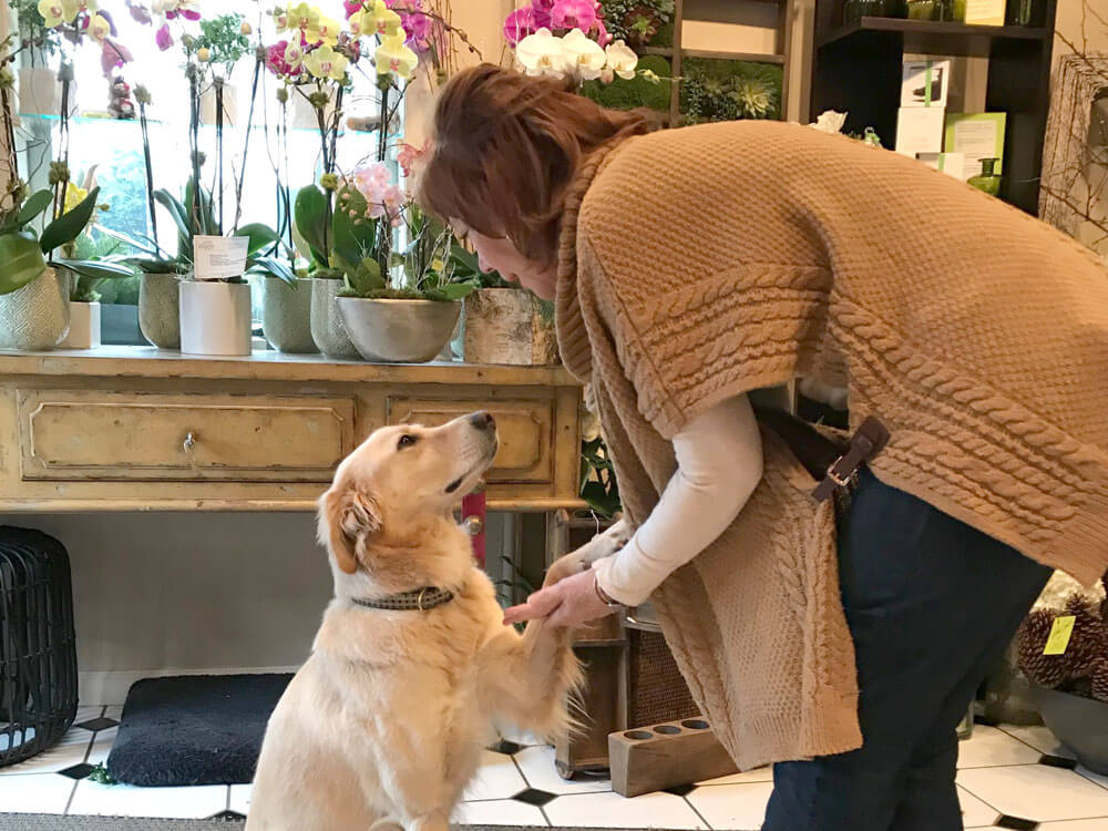 a woman greeting a dog in a flower shop