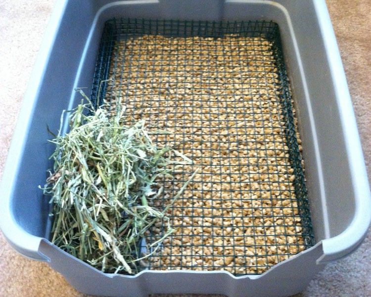 a litter tray with hay