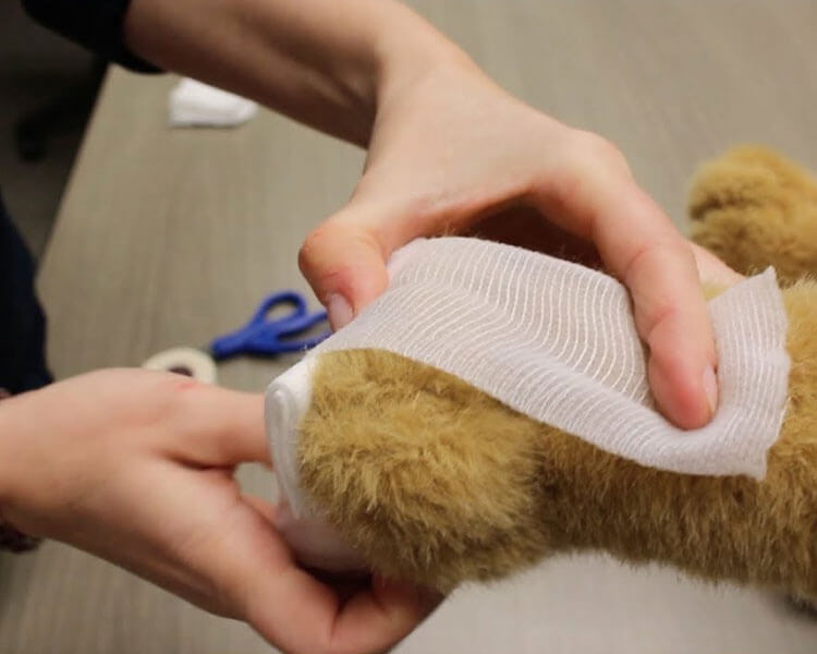 a dog's paw wrapped in a bandage after corn hulling