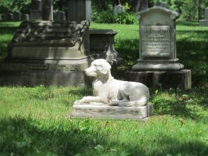 'Til Death Do Us Part: Pets Laid to Rest alongside their Owners