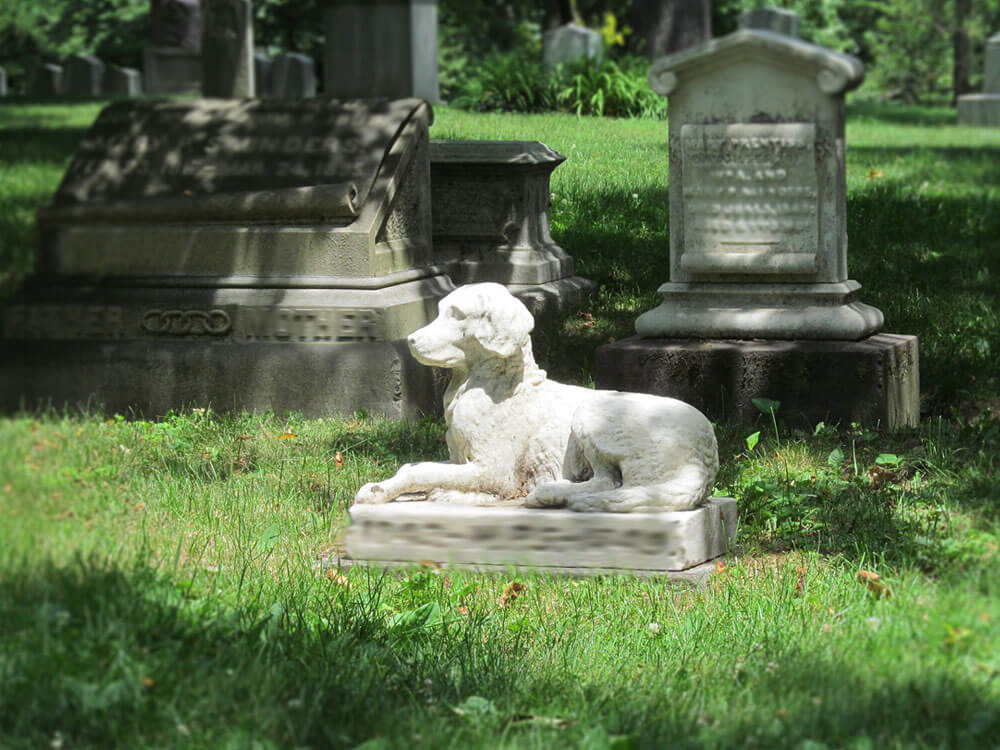 Pets Laid to Rest alongside their Owners