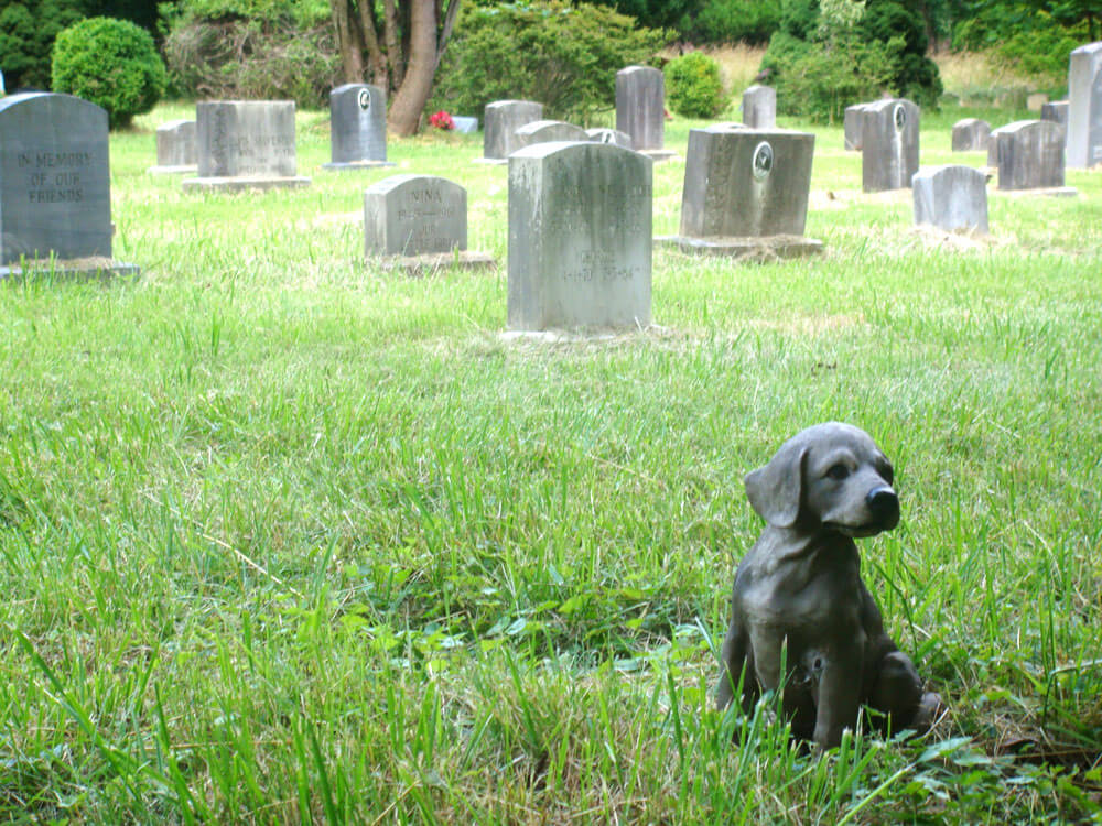 a statue of a dog in a cemetery