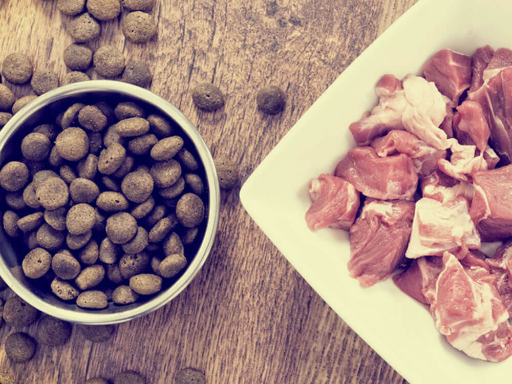 dry pet food with raw meat