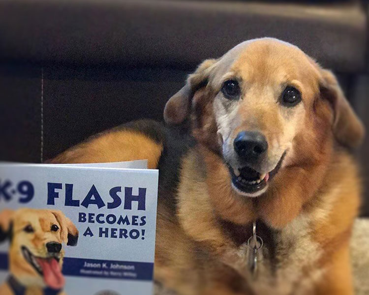 k-9 flash was rescued and adopted by the yakima police department and later became part of the narcotics detection team