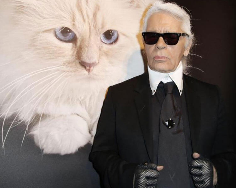 karl lagerfeld with his cat choupette in the background