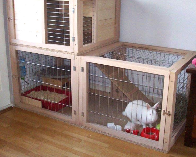 a white rabbit in a large hutch