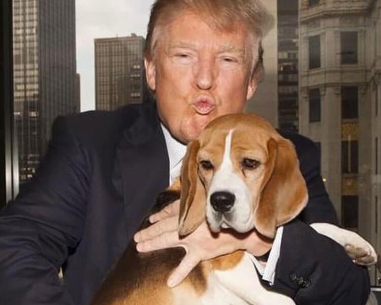 President Donald Trump carrying a dog