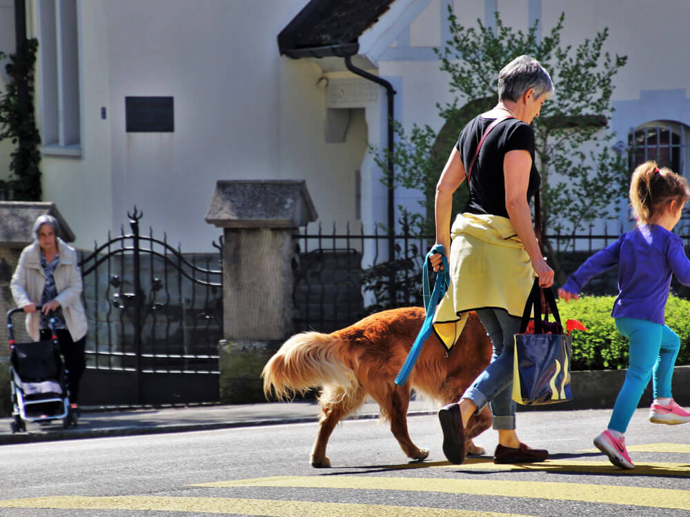 a woman with her daughter and dog crossing at the road