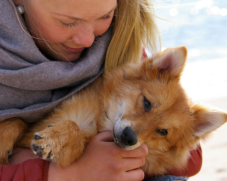 a woman cuddling her dog at the beach