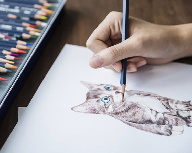 a woman draws a cat