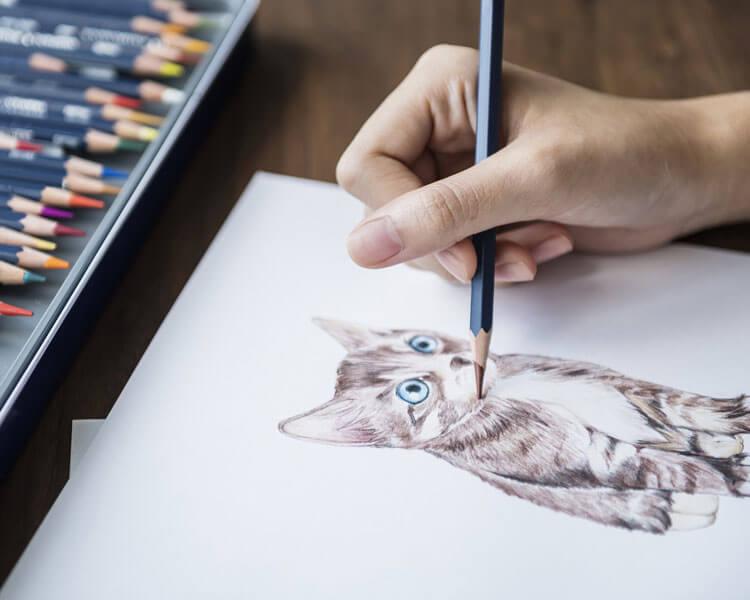 a woman draws a cat