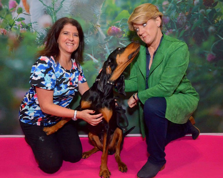 two women with a black and tan coonhound in crufts 2019 competition