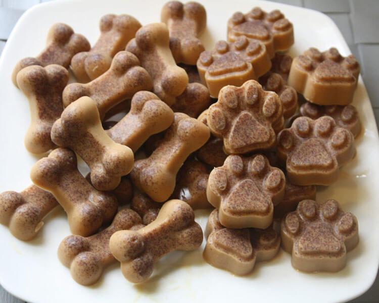 cannabis treats for dogs in a white plate