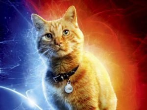 The Story of Captain Marvel's Cat, Goose