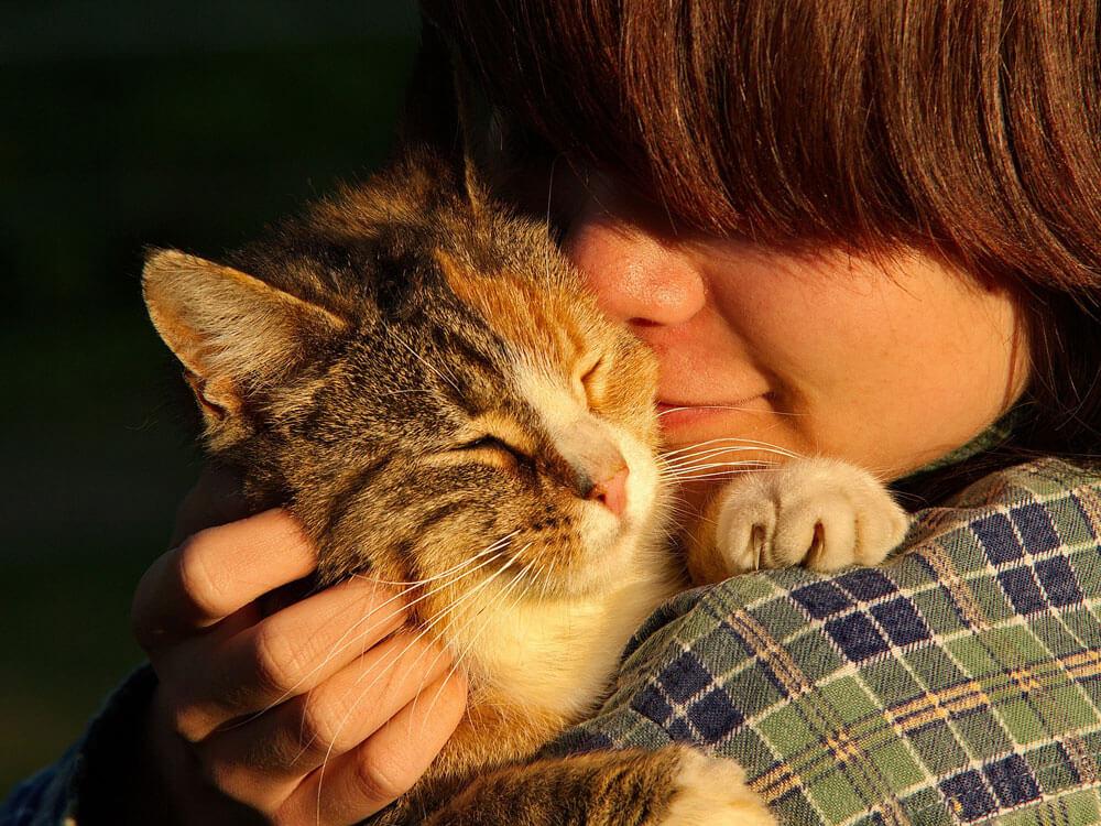 Is Your Behaviour Influencing Your Pets' Behaviour