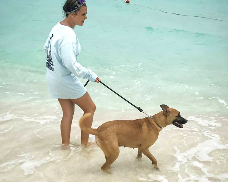a dog and woman enjoying the beach of Potcake Place
