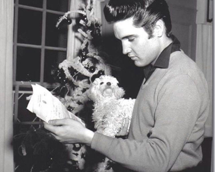 Elvis Presley carrying a toy poodle