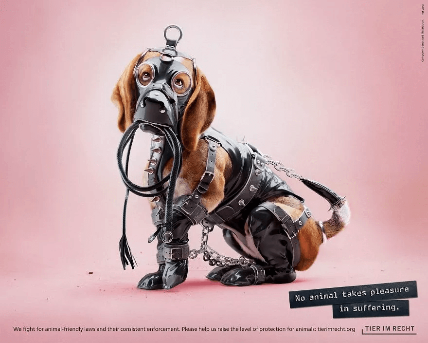 an edited image of a dog in a poster used for anti-animal cruelty campaign