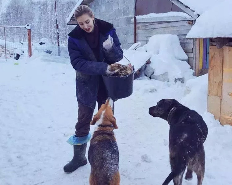 Daria Pushkareva feeding her dogs