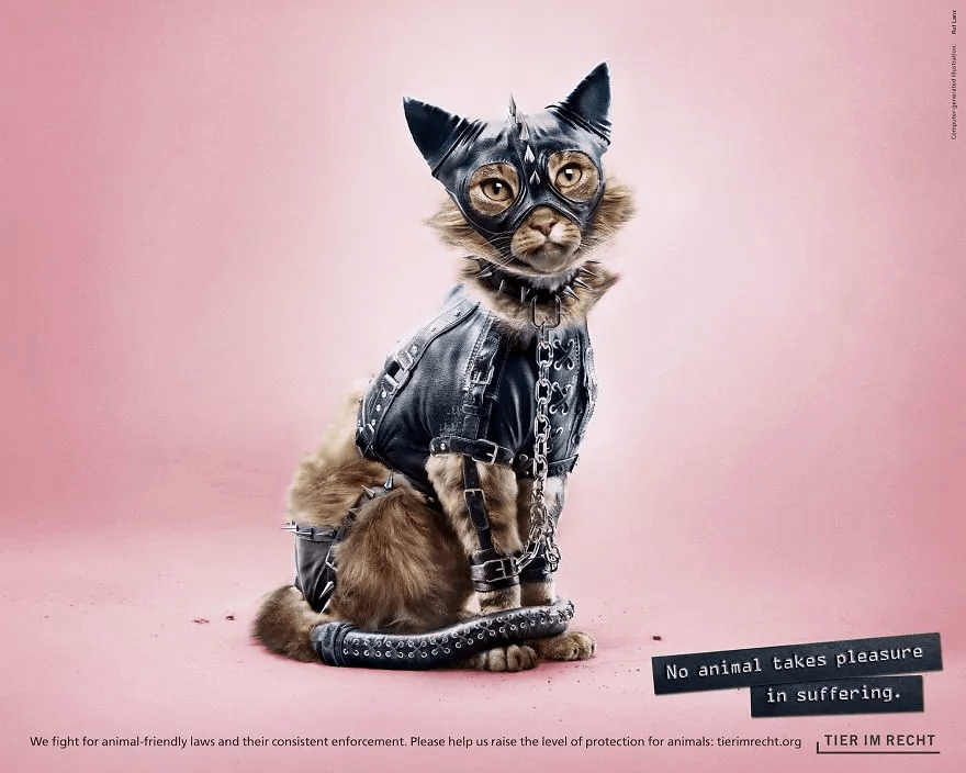 an edited image of a cat in a poster used for anti-animal cruelty campaign