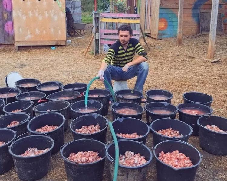 Daria Pushkareva's husband preparing food for the dogs