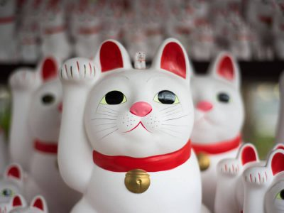 Get to Know the Original 'Lucky Cat'