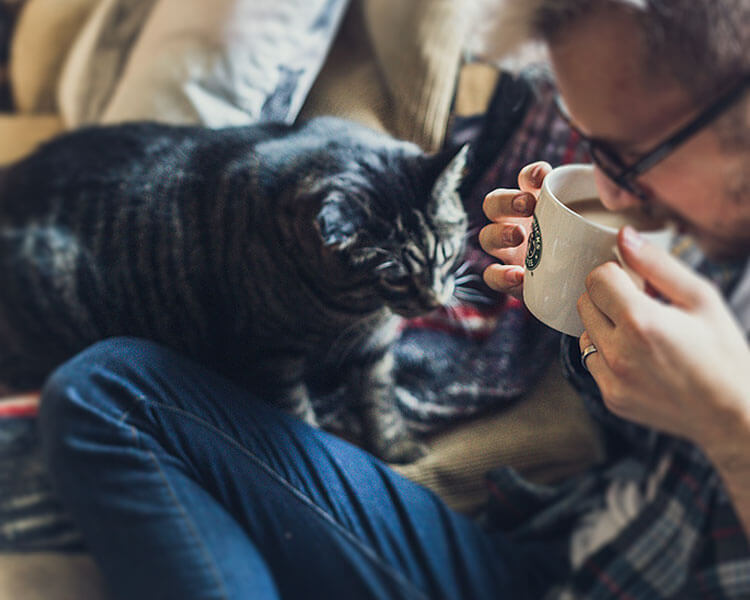 a black cat sitting beside of a man drinking coffee