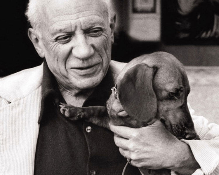 pablo picasso with his dog, lump