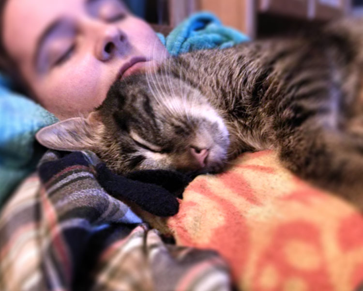 a cat and woman sleeping together