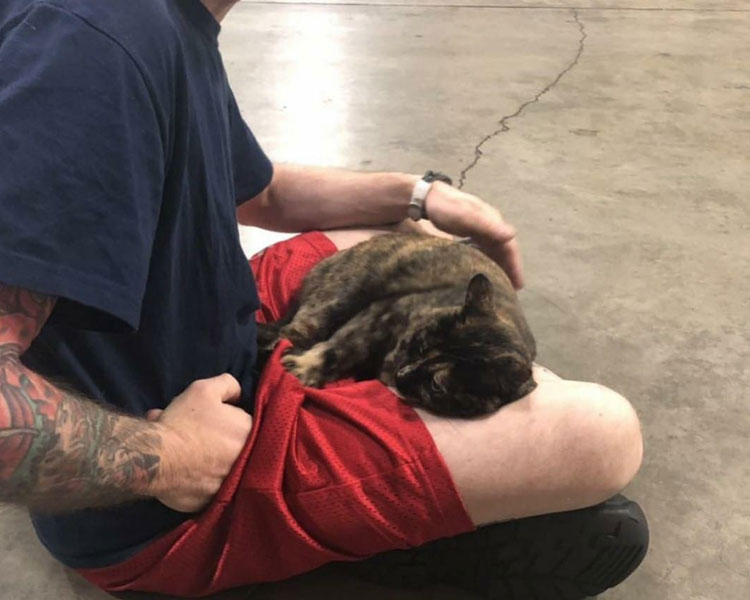edna sleeping on a firefighters lap