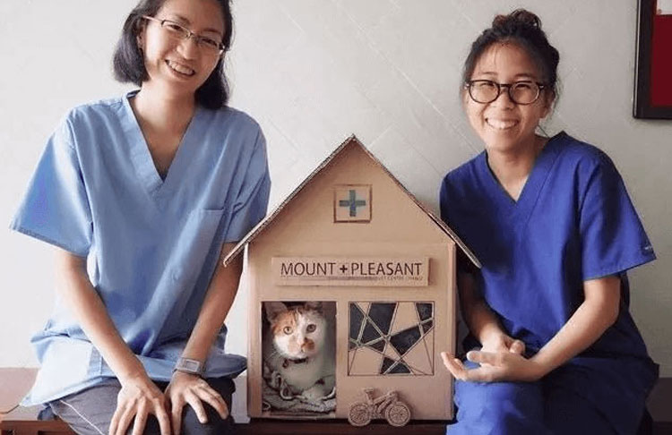 two vet doctors with cat Tisoy in his house box