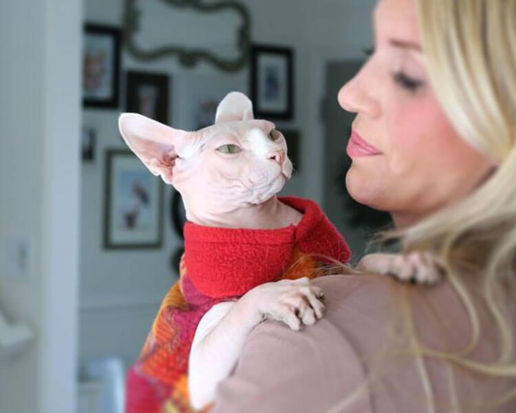 a woman cuddling her sphynx cat