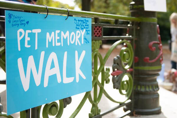 Battersea's Pet Memory Walk 2019
