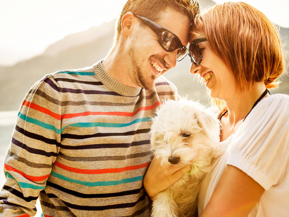 5 Best Dog Breeds for Busy Couples