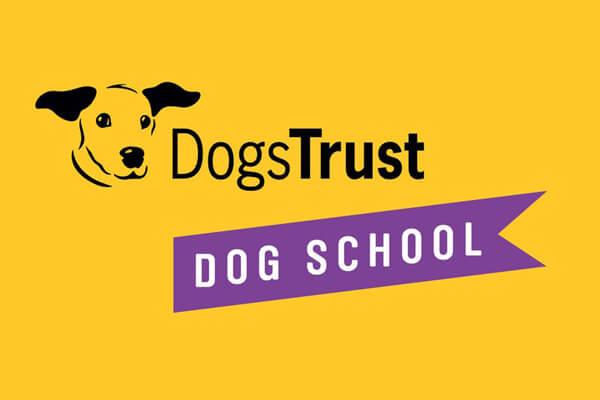 Happy Vet Visits (CPD) – Dog School Sussex