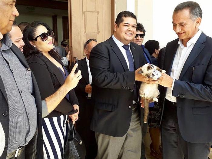 homeless cat hired employee dr leon advogato
