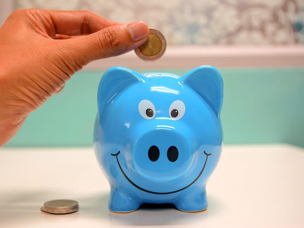 dog savings fund