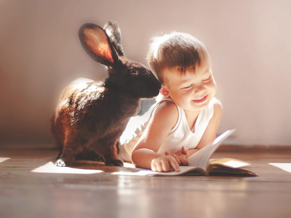 bunny plays with the kids and reading