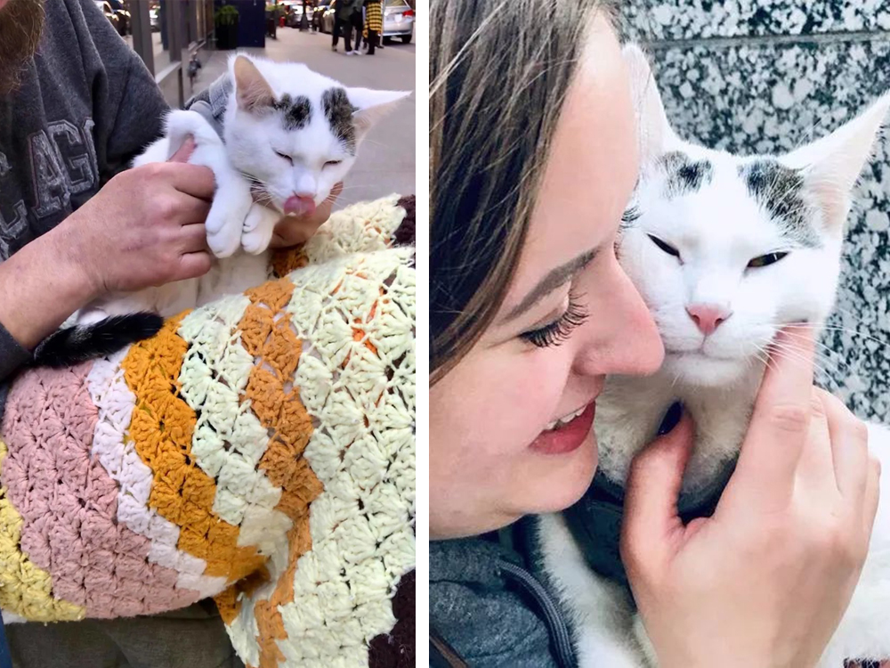 Casper cat and the beautiful girl