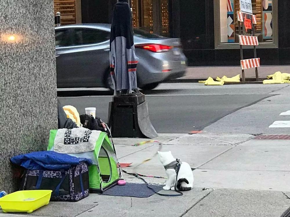 homeless cat Casper and owner