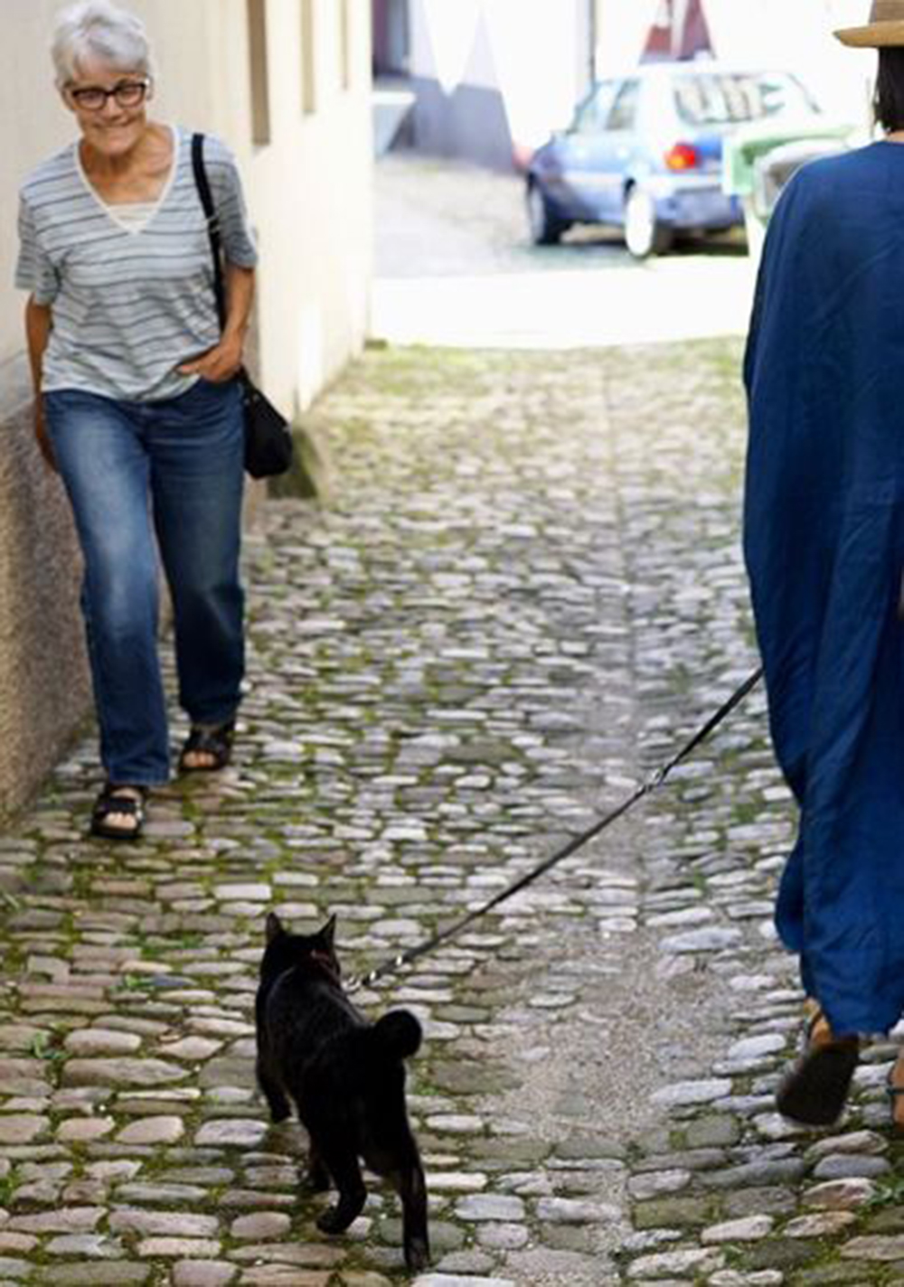 noro is walking together with the owner