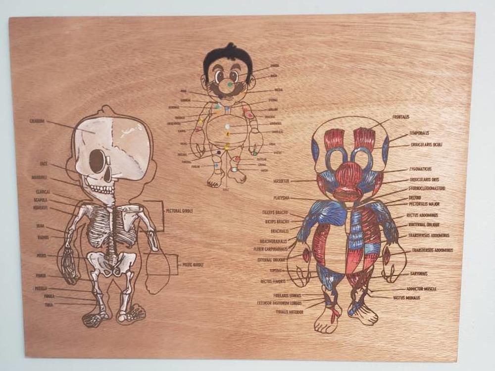 body parts chart