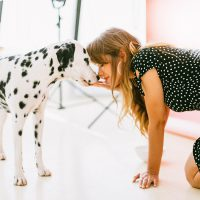 Awful Dog Odour: Reasons Why Your Dog Smells and Ways to Prevent It