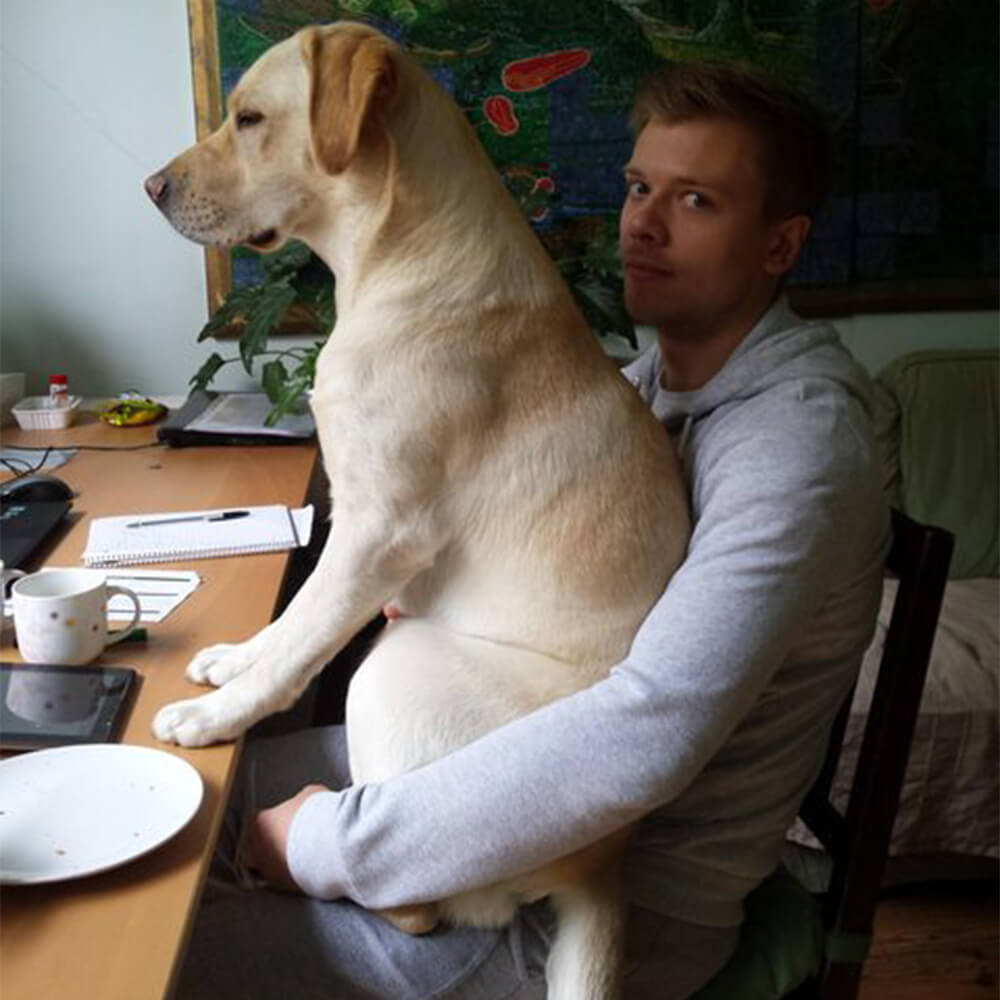dog want to work at the office